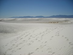 2011October00NMTrip_whiteSands07