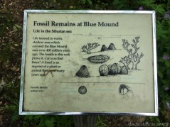 Flint Rock Nature Trail - Sign describing fossils