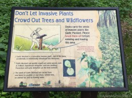 Wyalusing State Park - Sign detailing invasive plant threat at trailhead