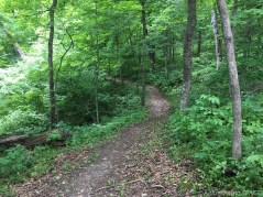 Wyalusing State Park - Trail to Little Sand Cave