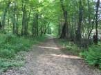 Mirror Lake State Park - Northwest Trail