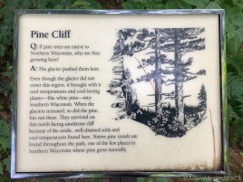 Governor Dodge State Park - Pine Cliff Nature Trail