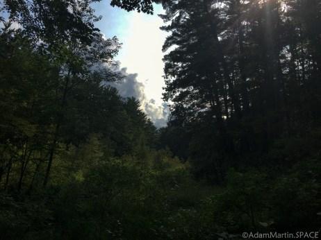 Rocky Arbor State Park