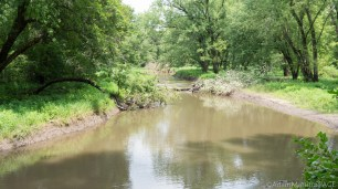 Tower Hill State Park - View of Mill Creek