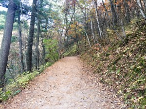 Willow River State Park - Trail down to Willow Falls