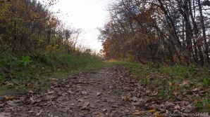 Willow River State Park - Trail to north overlook