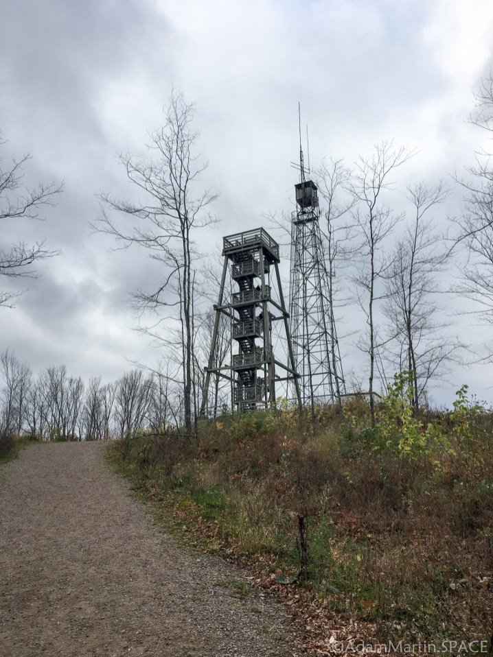 Timms Hill - View of tower from trail