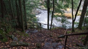 Dells of the Eau Claire River - Stairway down to river/falls