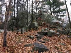 Rib Mountain State Park - Blue/green hiking trail