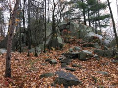 Rib Mountain State Park - Blue/green hiking trail