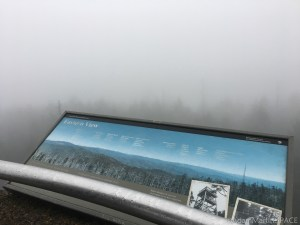 Clingmans Dome - Eastern View from the lookout tower