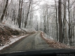Max Patch Mountain - Driving up the mountain access road