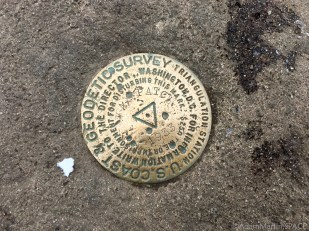 Max Patch Mountain - USGS survey marker