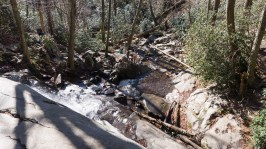 Laurel Falls - Looking down to the lower falls
