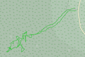 GaiaGPS hiking data @ Mount Charleston - Robbers Roost