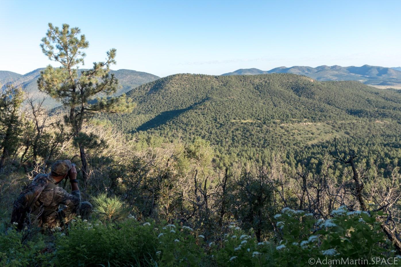 New Mexico Elk Hunt – Glassing for elk