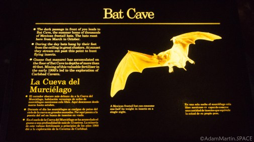 Carlsbad Caverns National Park - Bat Cave