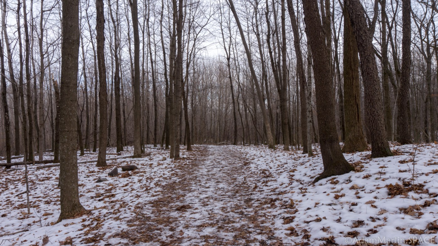 Kettle Moraine Pike Lake Unit - Wintry Forest