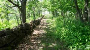 Nelson Dewey State Park - Cedar Trail hiking path