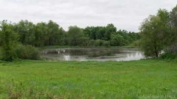 Richard Bong State Recreation Area - Groundwater pond