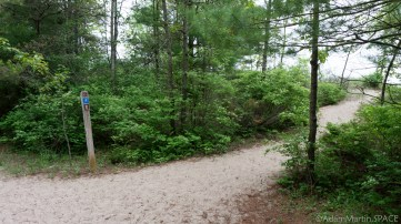 Kohler-Andrae State Park - Access to Lake Michigan on Woodland Dunes Nature Trail