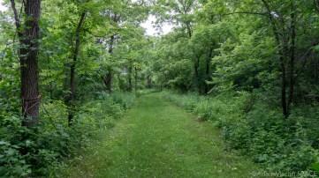 Richard Bong - Vista Nature Trail