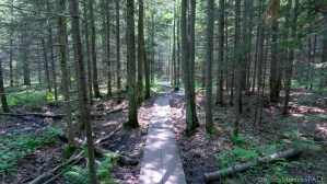 Houghton Falls Nature Preserve - Trail to Echo Dells & Houghton Falls