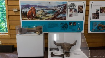 Interstate State Park - Mammoth fossils at the Ice Age Interpretive Center