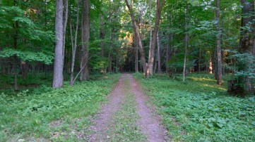 Council Grounds State Park - Hiking somewhere on the blue/green trails
