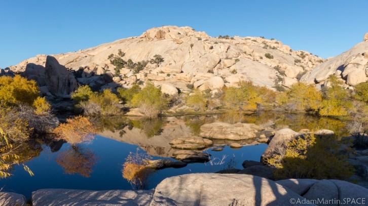 Joshua Tree - Barker Dam Nature Trail