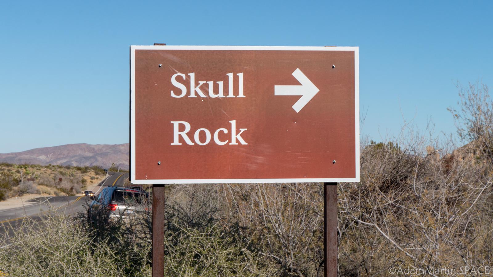Joshua Tree Skull Rock Adammartin Space