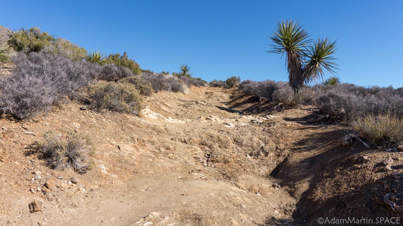 Joshua Tree - Trail to Lost Horse Mine