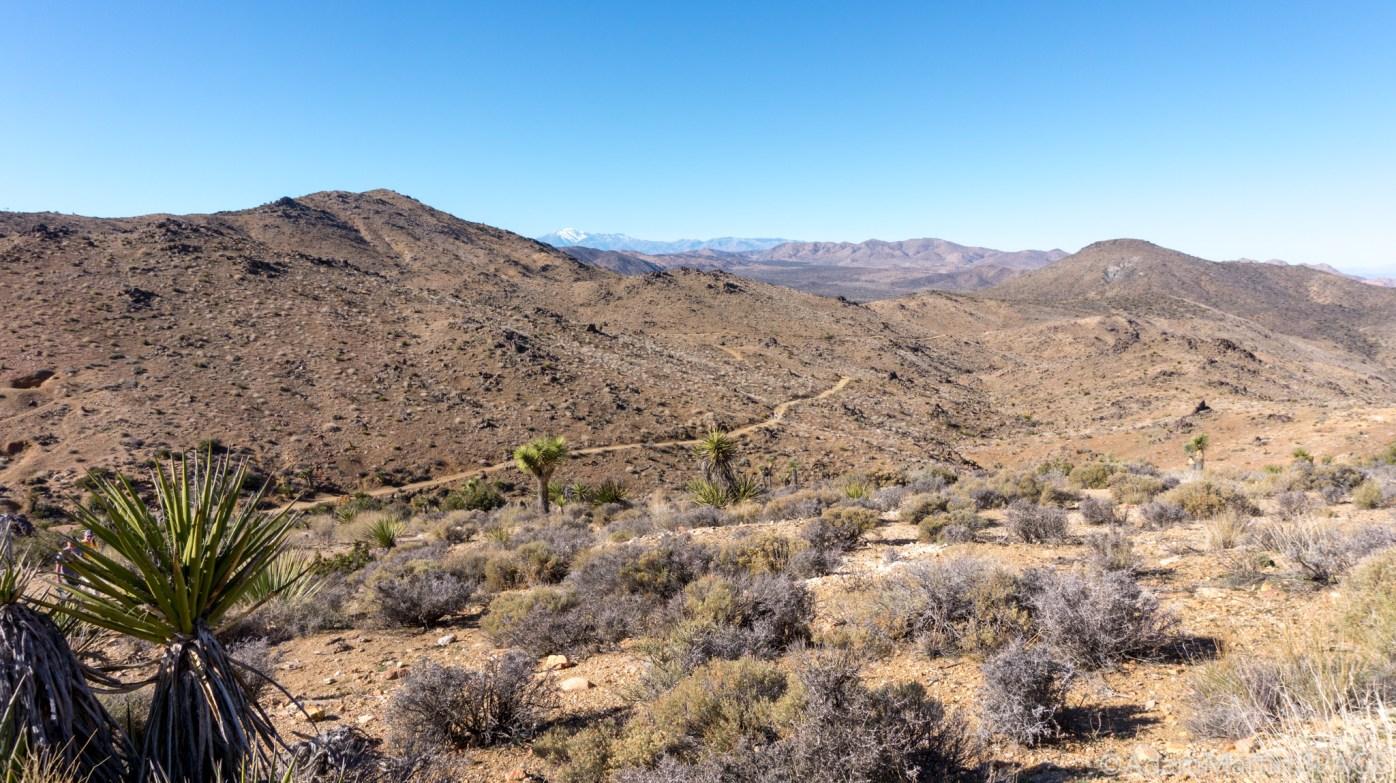 Joshua Tree - Views atop Lost Horse Mine