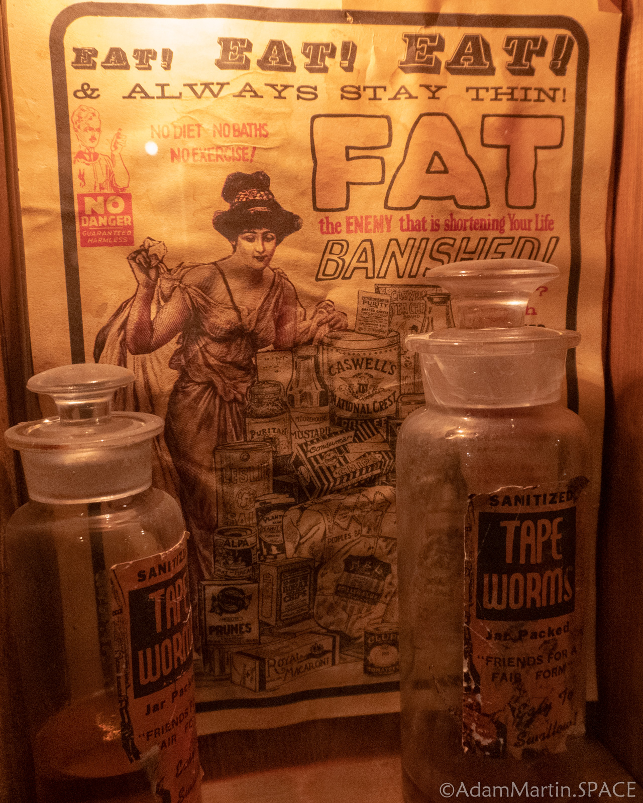 House On The Rock - Tape Worms For Weight Loss