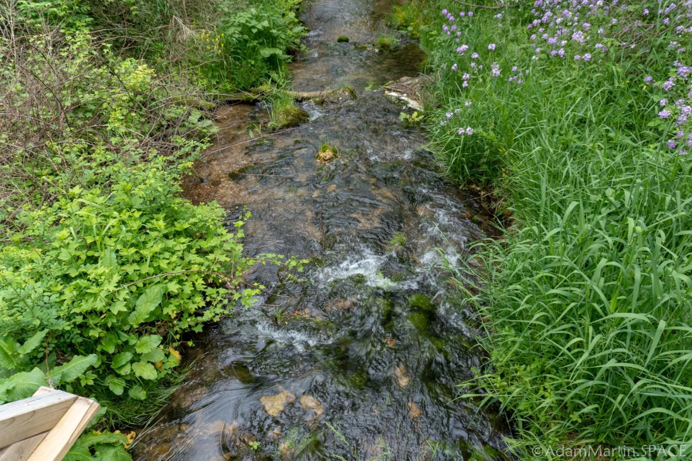 Cadiz Springs State Recreation Area - Zander Creek