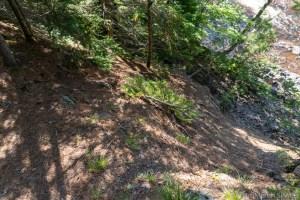 Potato River Dalles - Steep and dangerous cliffs