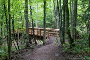 Bridge on trail to Morgan Falls & St Peter's Dome