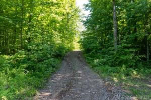 Wren Falls - Very Narrow Road