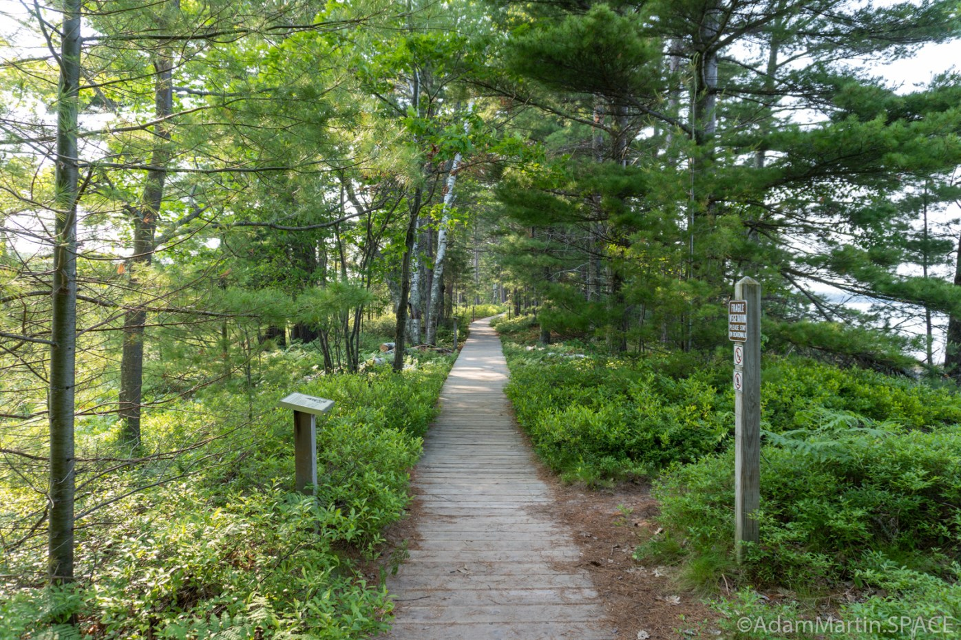 Big Bay State Park - Boardwalk Trail