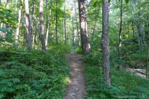 Perry Creek Rapids - Hiking trails