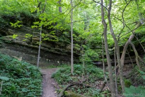 Perrot State Park - Bluffs and coves on Black Walnut Nature Trail