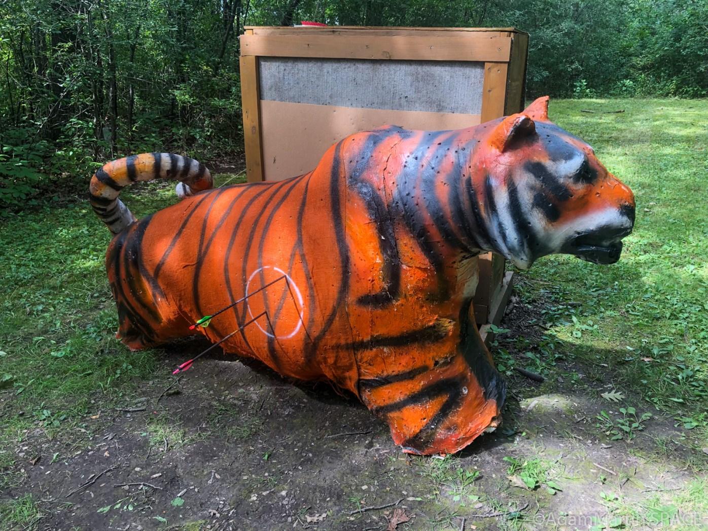 Safari Shoot @ West Allis Bowmen - Tiger target