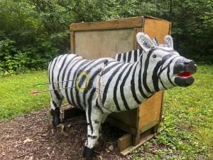 Safari Shoot @ West Allis Bowmen - Zebra target