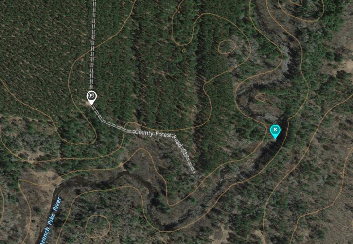 onXmaps satellite view @ Threefoot Falls Rd517 (Fail)