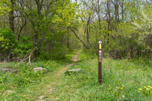 Devil's Lake State Park - East Bluff / Ice Age Trail head