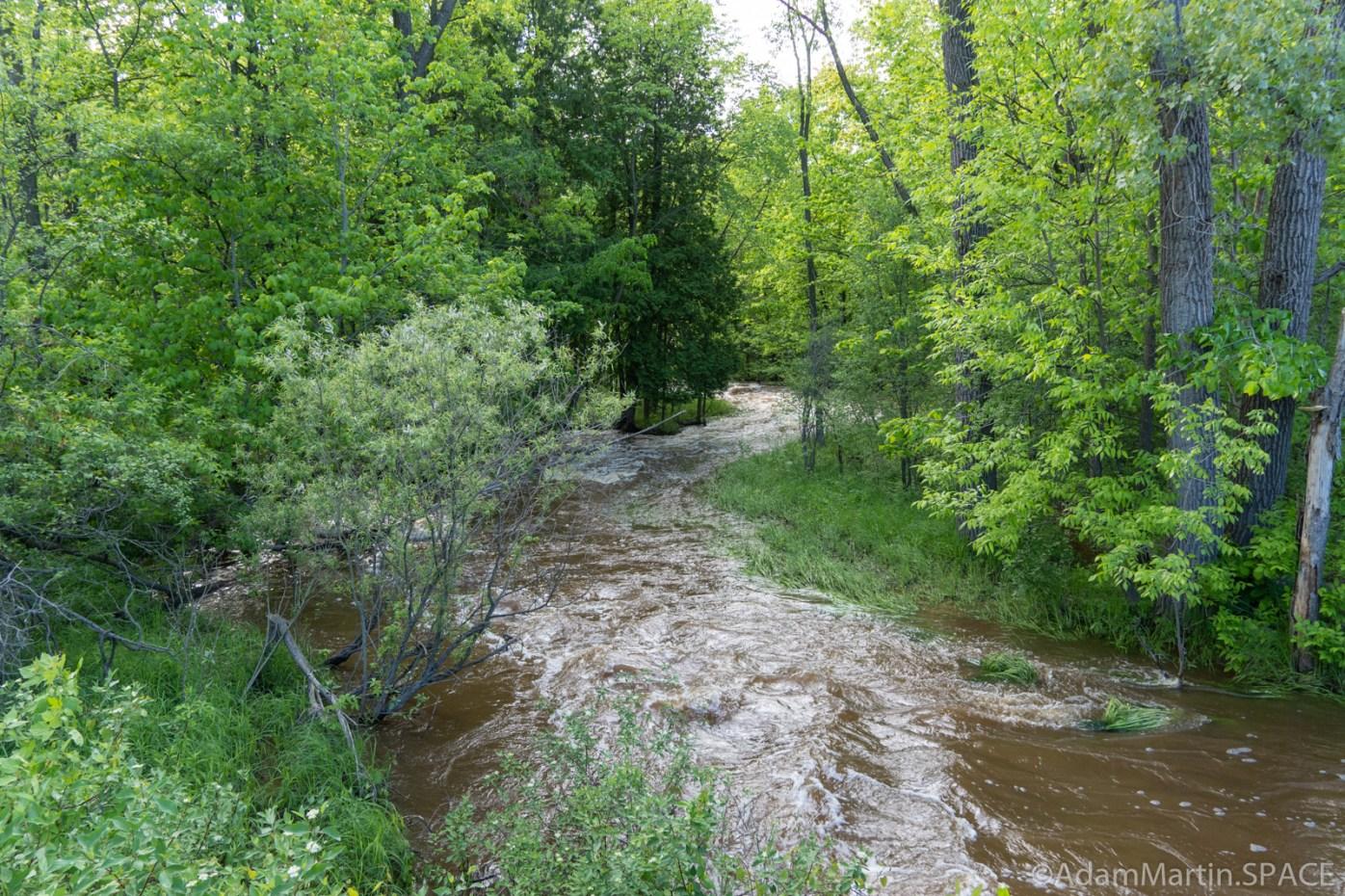 Baird Creek - High waters along the creek
