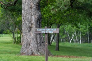 Copper Culture State Park - Caution Honeybees Hive In Tree sign