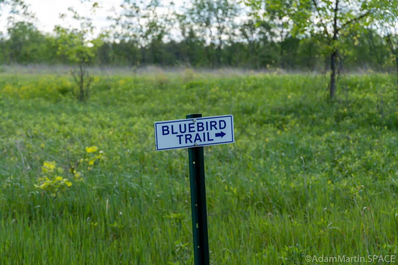 Copper Culture State Park - Bluebird Trail