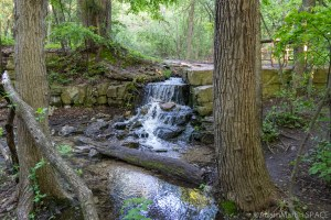 High Cliff State Park – Small falls at the very top