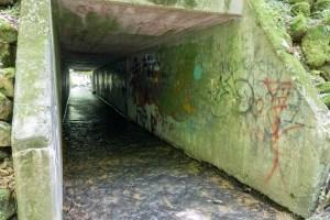 Tripp Falls - Drainage tunnel underneath road where creek drains back towards Red Cedar River